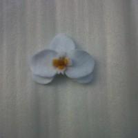 Bros Bunga Anggrek Putih Flanel B04