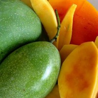 buah mangga manalagi