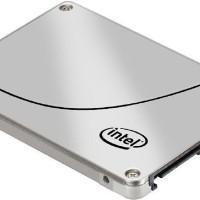 INTEL SSD DC S3500 300GB