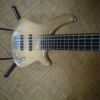 bass guitar merk f dan d