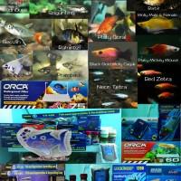 Ikan Hias dan perlengkapan Aquarium