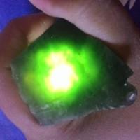 Green Tadulako / Lidah Buaya SUPER