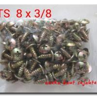 1KG - Sekrup TS 8x3/8