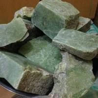 Green Sojol / Giok Hercules Sulawesi