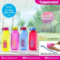 Tupperware Eco Bootle Square 500ml Free brush