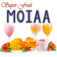 MOIA | MOYA | MOIAA Premix Silky Pudding | Puding Sutra lembut promo