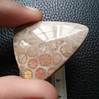 18 gram batu liontin fosil teratai bunga besar kwalitas super langka