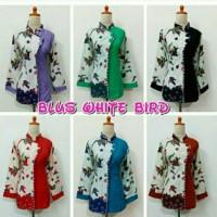 blus white bird