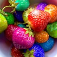 benih/biji/bibit buah strawberry rainbow