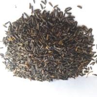 Biji Niger Kemasan 250gr Niger Seed Untuk Burung Pemakan Bijian