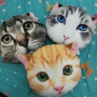 bantal kucing / boneka kepala kucing 3d
