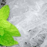 Menthol Cristal / Cristal mint / Peppermint 1Kg