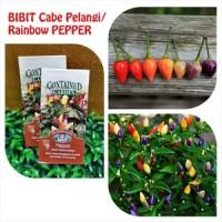 Benih Cabai Rainbow, Bibit Cabai Pelangi, Cabai Warna, Cabe Rainbow