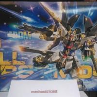 MG Strike Freedom Gundam FBM BANDAI