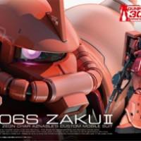 Bandai Gundam RG MS-06S Zaku II
