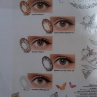 Softlens Warna Ice Gold & Ice Silver by Exoticon