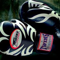 Glove,Sarung Tinju,Boxing Thai Twins + Handwrap Fairtex Sepasang 8 oz