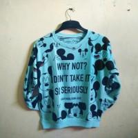 mickey sweater blue