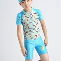 Baju Renang Anak Dolphin A Setelan Renang Unik Lucu Swimwear Import