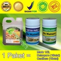 Obat TBC Paru Paru Basah Herbal Paling Ampuh