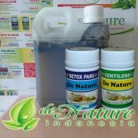 Obat Paru Paru Basah Herbal Detox Paru Centiloss Madu | DE NATURE