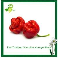 Benih Red Trinidad Scorpion Moruga Blend-Isi 5 Biji