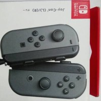 Nintendo Switch Joy-con L/R Grey