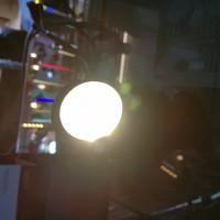 Lampu Sorot Taman LED Outdoor 5 Watt 220 Volt/Garden Light LED 5w