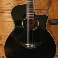 gitar akustik apx500ii Blackgloss banyak bonus