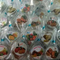 souvenir pernikahan tempelan kulkas buah murah