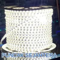 (Sale) Lampu Strip / Rope LED 5050 Warna Putih/White SMD 5050 IP44