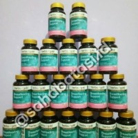 Herbs of Gold - Breastfeeding support 30 Kapsul