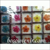 (Murah) Souvenir Bros bunga dahlia kecil