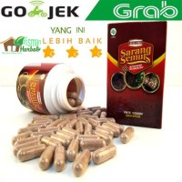 Walatra Sarang Semut kapsul 100% Original With Nano Teknology