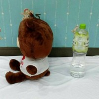 (Diskon) Boneka Brown Line Besar Yelpo Halus