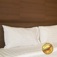 Isi Bantal Cinta/Panjang Kualitas Super Standar Hotel (45x95cm)