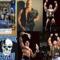 SHF Stone Cold WWE 2K17 2K18 2K19 Playstation PS 4 PS4 Slim Pro Bandai