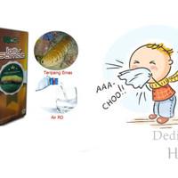 Obat Flu   Pilek   Influenza   Meler