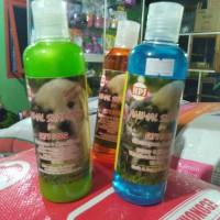 Shampo Sampo Kucing Wangi