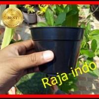 Pot Bunga 10cm Hitam Pot Tanaman Hias Grosir Murah Plastik Pot 10 cm