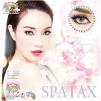 Spatax Brown Softlens by Sweety Plus