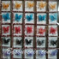 Souvenir Bros KUPU-KUPU warna kecil