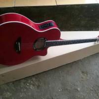 Gitar akustik elektrik yamaha apx500