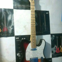 Fender telecaster custome