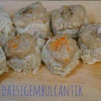 Dimsum Halal No MSG - 1pack 12 pcs (mix)