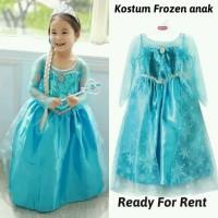 Sewa Kostum ulang tahun Elsa frozen princess
