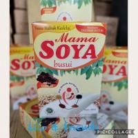 Mama Soya Busui