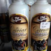 caviar shampo kuda. penumbuh rambut