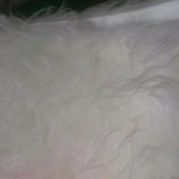 Karpet bulu  putih import korea 100x130 uda dksh anti slip