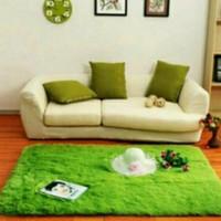 Karpet bulu termurah 150x100 tebal 2cm